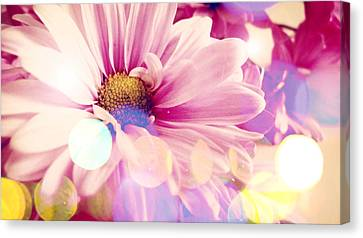 Simple Charm Canvas Print by Lynsie Petig