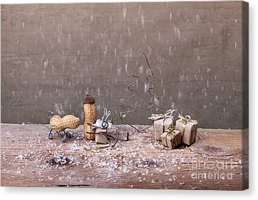Simple Things - Christmas 07 Canvas Print by Nailia Schwarz