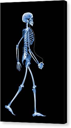 Skeleton With An Ipod Canvas Print by D. Roberts