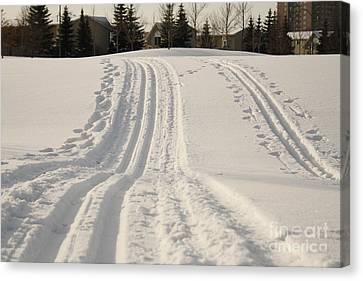 Skier's Heaven Canvas Print by Kristi Jacobsen