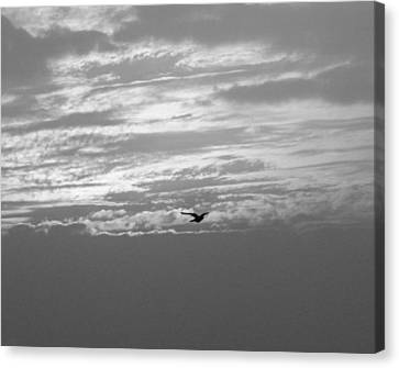 Sky High Canvas Print by Prashant Ambastha