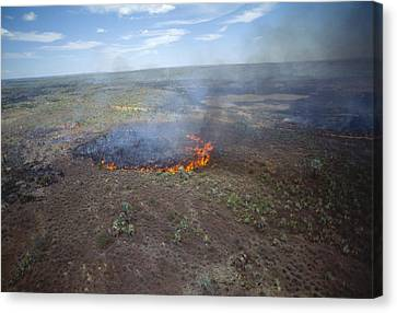 Slash And Burn Agriculture Canvas Print by Alexis Rosenfeld