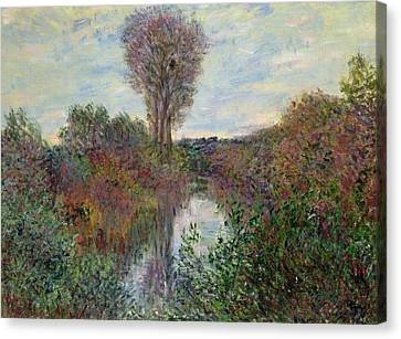 Small Branch Of The Seine Canvas Print by Claude Monet