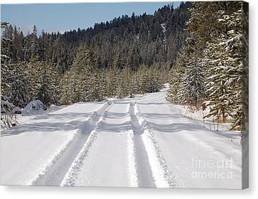 Snow Road Canvas Print by Lucy Bounds
