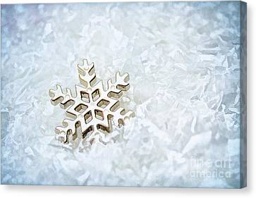 Snowflake Canvas Print by Darren Fisher