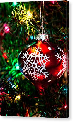 Snowflake Ornament Canvas Print by Christopher Holmes