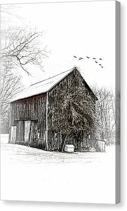 Snowy Morning Canvas Print by Mary Timman