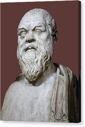 Socrates Canvas Print by Sheila Terry