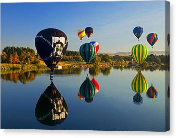 Soft Landings Canvas Print by Mike  Dawson
