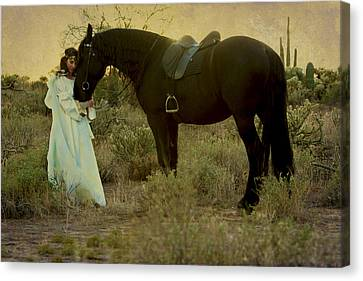 Solace Canvas Print by Jean Hildebrant