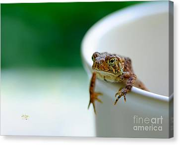 Somebody Needs Coffee Canvas Print by Lois Bryan