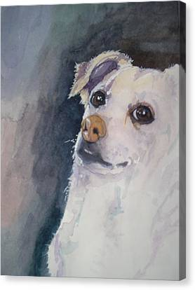 Sorry Canvas Print by Victoria Glover