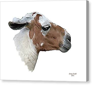 South American Goat Canvas Print by Larry Small