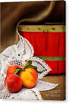 Southern Peaches Canvas Print by Cheryl Davis