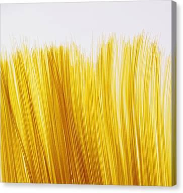 Spaghetti Canvas Print by David Chapman