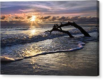 Sparkly Water At Driftwood Beach Canvas Print by Debra and Dave Vanderlaan
