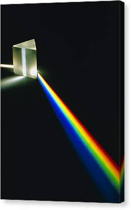 Spectral Light From Prism Canvas Print by David Parker