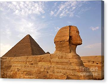 Sphinx Of Giza Canvas Print by Jane Rix