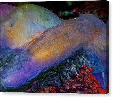 Canvas Print featuring the digital art Spirit's Call by Richard Laeton