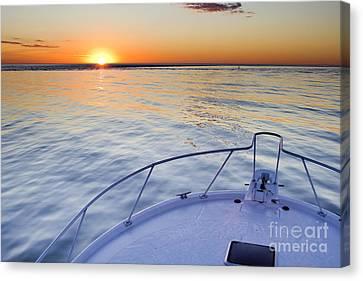 Sportfish Sunrise On The Atlantic Canvas Print by Dustin K Ryan