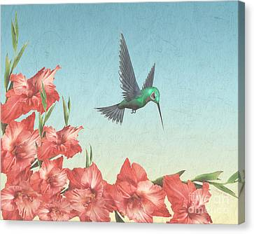 Spring Flight Canvas Print by Cheryl Young