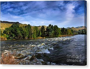 Spring Flow Canvas Print by Robert Bales