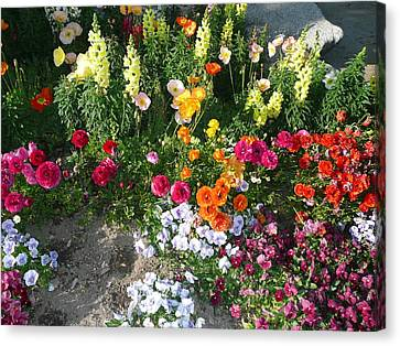 Spring Flower Garden Canvas Print by Mary M Collins