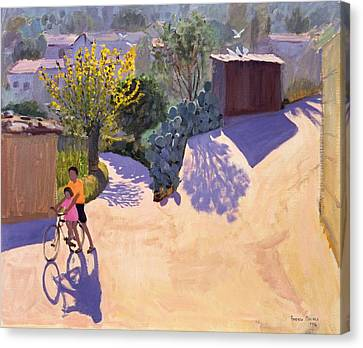 Spring In Cyprus Canvas Print by Andrew Macara