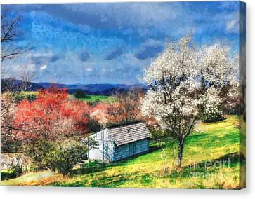 Spring In The Mountains II Canvas Print by Dan Carmichael