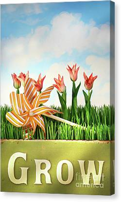 Springtime Fun Canvas Print by Sandra Cunningham