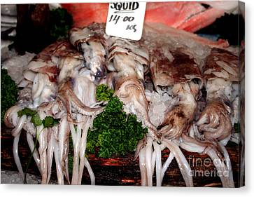 Squid For Sale Canvas Print by Heather Applegate