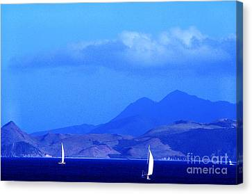 St Kitts Sailing Canvas Print by Thomas R Fletcher