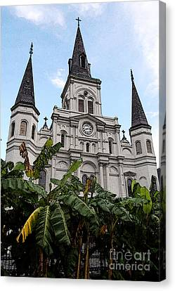 St Louis Cathedral Rising Above Palms Jackson Square New Orleans Fresco Digital Art Canvas Print by Shawn O'Brien