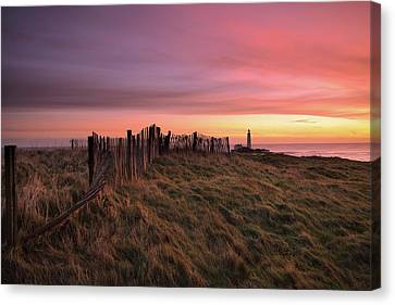 St Mary's Lighthouse, Whitley Bay, Northumberland Canvas Print by Tom Hill