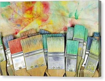 Stack Of Colorfull Paintbrushes On Palette Canvas Print by Sami Sarkis