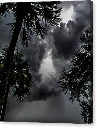Standing Through The Storm Canvas Print by Christy Usilton