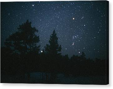 Starfield Including Orion, Sirius & Betelgeuse Canvas Print by Pekka Parviainen