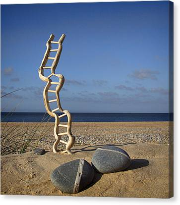 Steps To Heaven Canvas Print by Martin  Fry