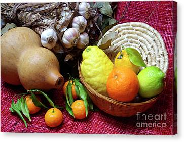 Still-life Canvas Print by Carlos Caetano