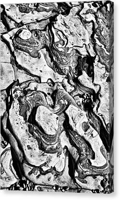Stone Formation Point Lobos Canvas Print by Garry Gay