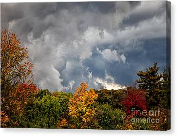 Storms Coming Canvas Print by Ronald Lutz