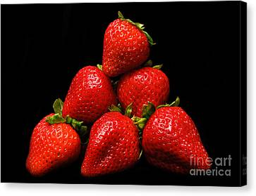 Strawberries On Velvet Canvas Print by Andee Design