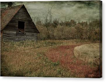Strawberry Lane  Canvas Print by JC Photography and Art