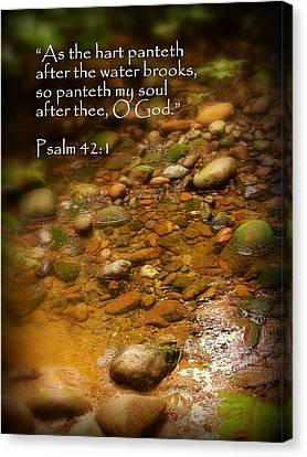 Stream Bed Psalm 42 Canvas Print by Cindy Wright