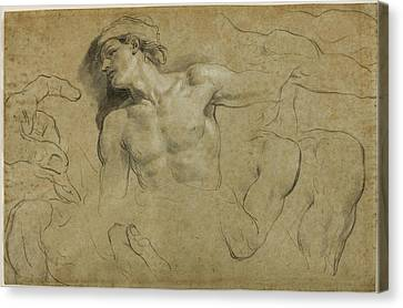 Studies Of Hands - Shoulders And A Leg Canvas Print by Carlo Cignani