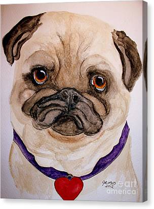 Studley Has A Heart Canvas Print by Carol Grimes