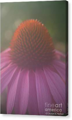 Sultry Canvas Print by Susan Herber