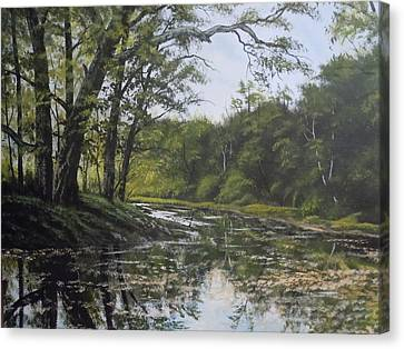 Summer Creek Reflections Canvas Print by James Guentner