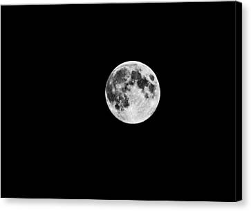 Summer Moon Canvas Print by Paul Howarth