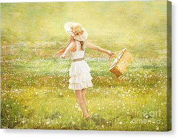 Summer Picnic  Canvas Print by Cindy Singleton